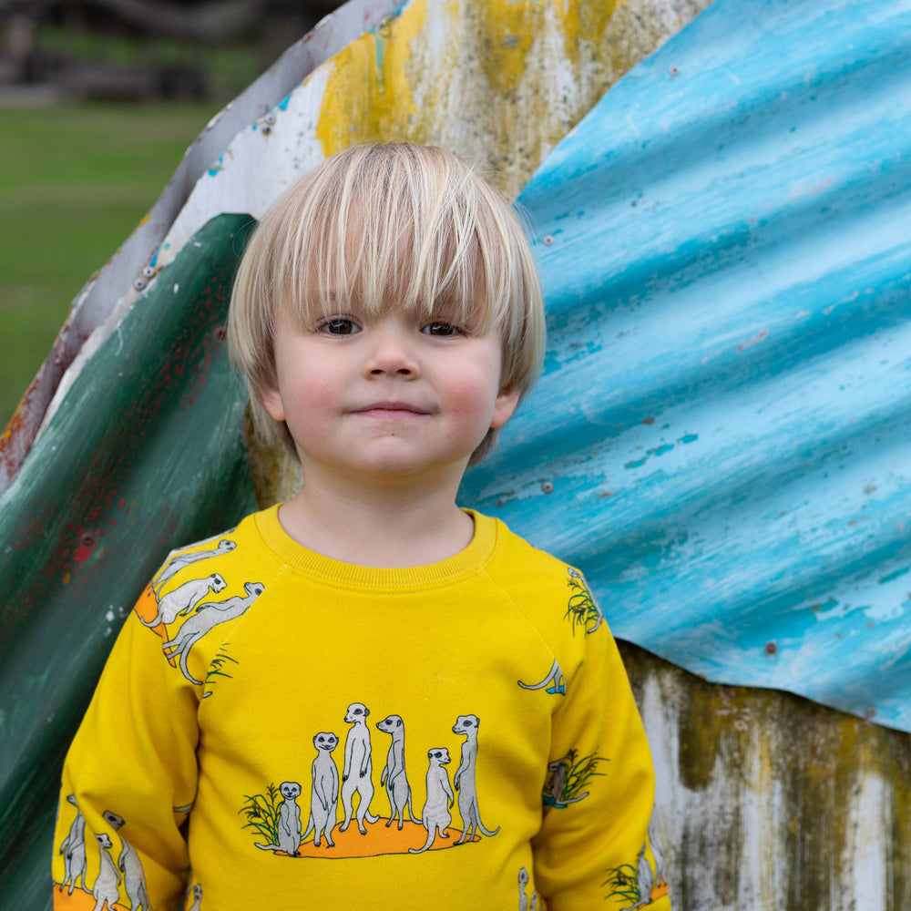 Boy wearing yellow meerkat jumper