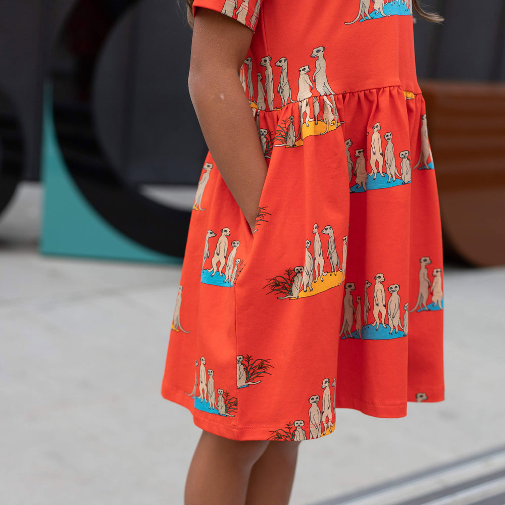 close up of oomph and floss meerkat dress.  red meerkat dress.  Girls dress with pockets.