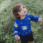 Blue-chihuahua-butterflies-dog-kids-unisex-boy-girls-jumper