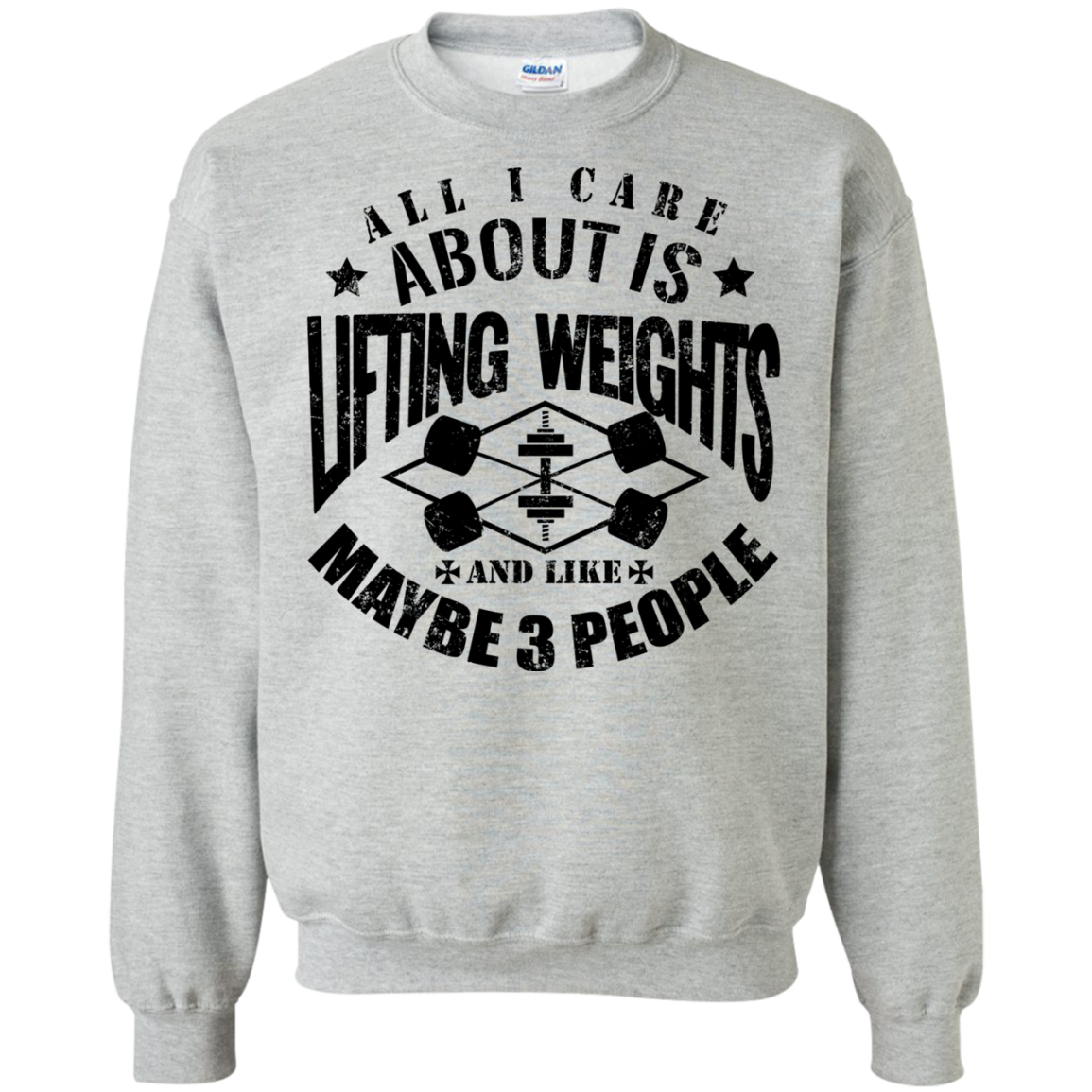 All I Care About Is Lifting Weights & Maybe Like 3 People T-Shirt Hoodie Long sleeve Sweatshirt - The Sun Cat
