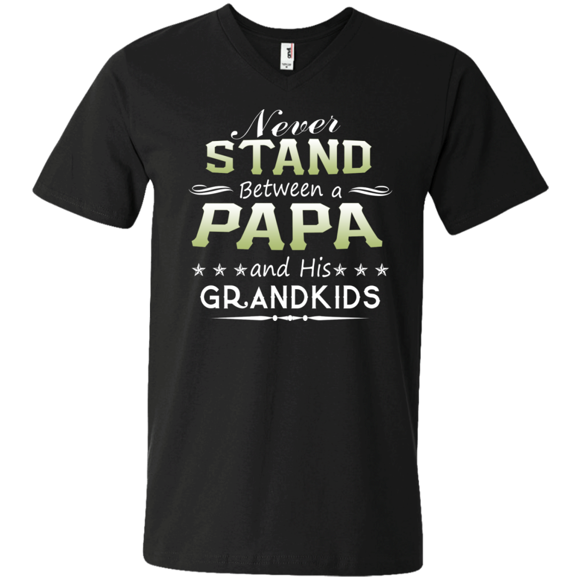 Never Stand Between a Papa and his Grandkids T-shirt - The Sun Cat