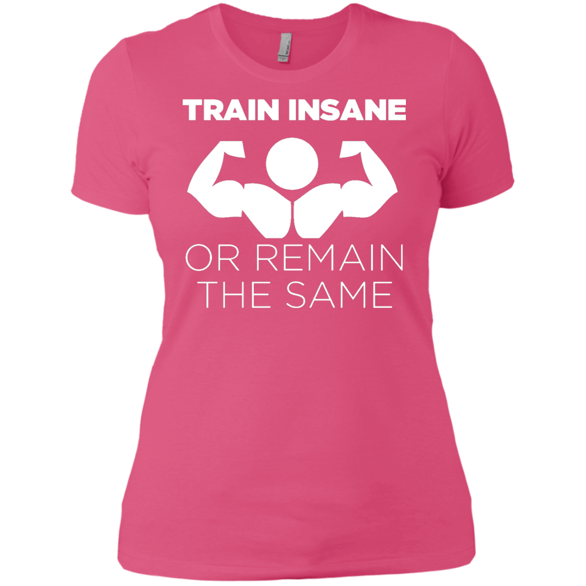 Panoware Train Insane Or Remain The Same Gym Workout T-Shirt