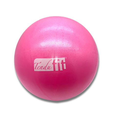 T1022- TenduFit  Small Exercise Ball