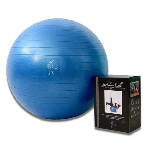 T1058- Tendu Stability Ball