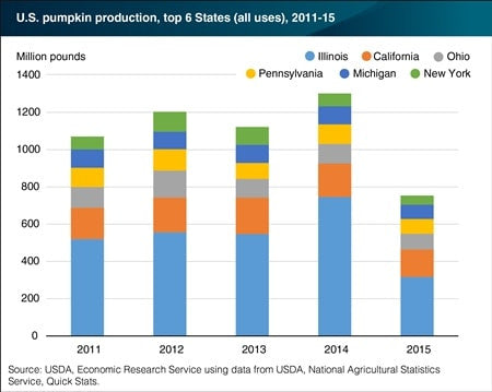 USDA Pumpkin Sales Chart