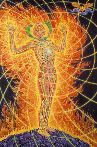 Holy Fire by Alex Grey