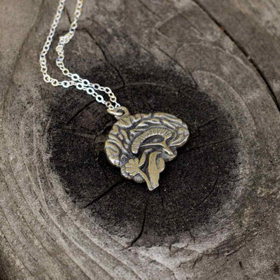 Brain necklace with a silver chain.