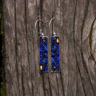 Particle Physics Earrings - using an image from a bubble chamber - science jewelry, great gift for a student, teacher, or physicist