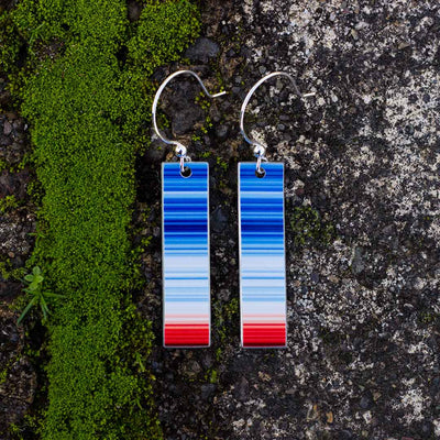 Climate Change Earrings