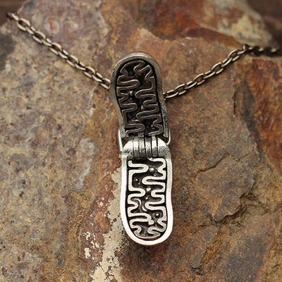 Mitochondria Necklace - a 2-layer locket mitochondrion pendant. Great jewelry gift for teacher or student in biology or science. This photo shows the brass in front and pewter in back.