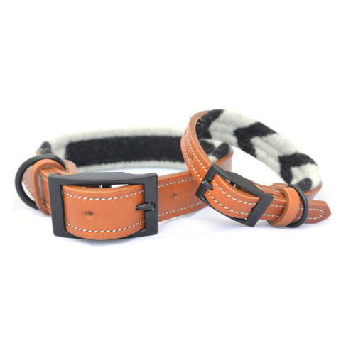 bela and blue black and white wool-lined leather dog collar