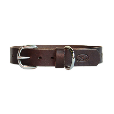 Sleepy Pup Classic Brown Leather Collar