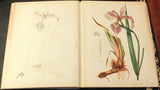 Louis Prang (1824-1909), Proof Book Chromolithographic Process Illustrated