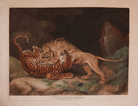 James Ward (1769-1859), A Lion and Tiger Fighting