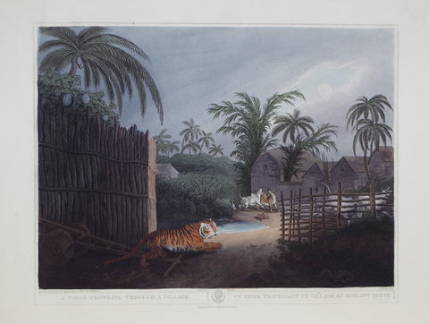 Thomas Williamson (1758-1817) and Samuel Howitt (1765-1822), A Tiger prowling through a Village