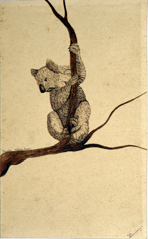F. C. Bunbury (Early 19th Century) Koala Bear