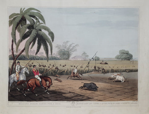 Thomas Williamson (1758-1817) and Samuel Howitt (1765-1822), Beating Sugar Canes for a Hog