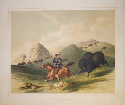George Catlin (1796-1872), Buffalo Hunt Chasing Back