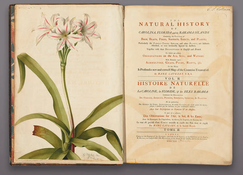 Mark Catesby (1683-1749) The Natural History of Carolina, Florida, and the Bahama Islands and the volume of individual watercolors and prints assembled by Peter Collinson from the early 1740s through 1767