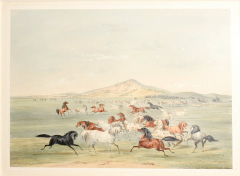 George Catlin (1796-1872), Wild Horses at Play