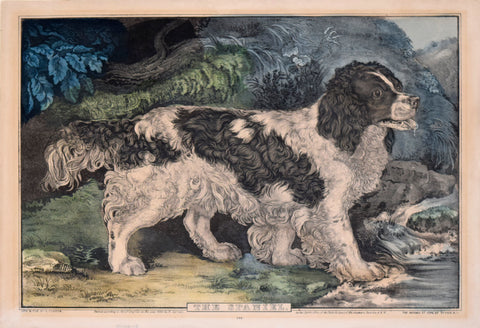 Nathaniel Currier (1813-1888) & James Ives (1824-1895), The Spaniel