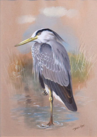 Basil Ede (1931-2016), Adult Grey Heron