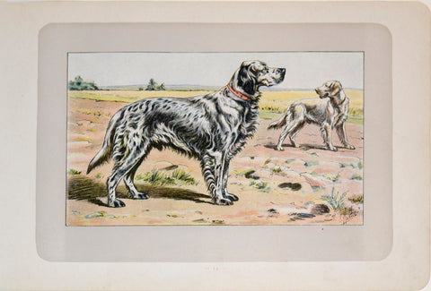P. Mahler & J.B. Samat, English Setter