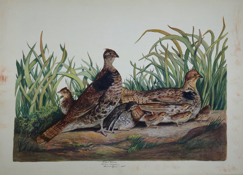 Carroll Sargent Tyson (1877-1956), Grouse
