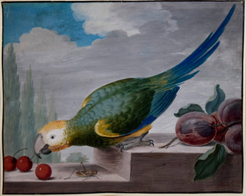 J. F. Hefele (German, D. 1710), Parrot and Fruit