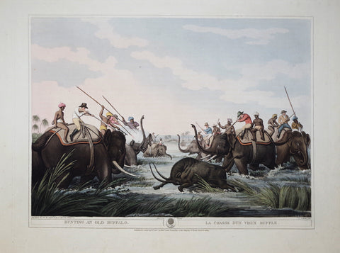 Thomas Williamson (1758-1817) and Samuel Howitt (1765-1822), Hunting an Old Buffalo