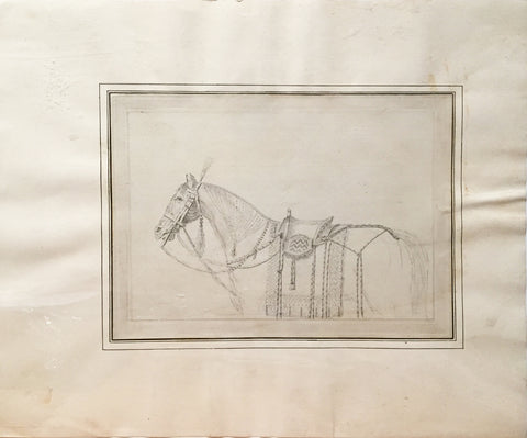 COMPANY SCHOOL (NINETEENTH-CENTURY) [Study of a Bridled Horse]