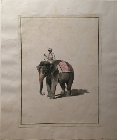 COMPANY SCHOOL (NINETEENTH-CENTURY) [Mahout with Elephant]