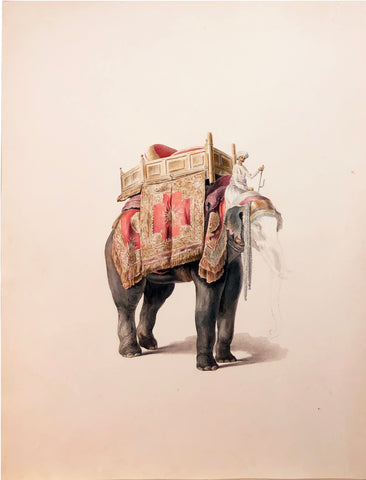 COMPANY SCHOOL (NINETEENTH-CENTURY) [Mahout with Blanketed Elephant]