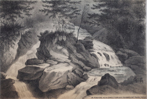 August Kollner (1813-1907, In Ravine near Sweet Briar Fairmount Park, Phila
