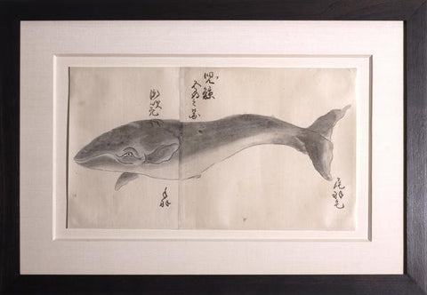 Japanese Whale Watercolor, Ko-kujira / Gray Whale
