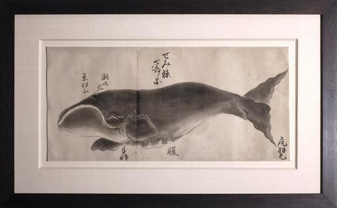 Japanese Whale Watercolor, Semi-kujira / Right Whale