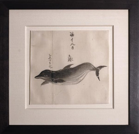 Japanese Whale Watercolor, Suji-iruka / White-sided Dolphin