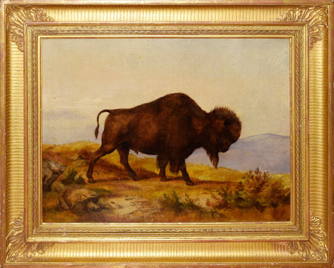 Alfred Sully (1820-1879) Bison Bull