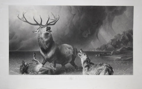 Landseer, Sir Edwin Henry (1802-1873), Landseer, Thomas (1795-1880),  The Stag at Bay