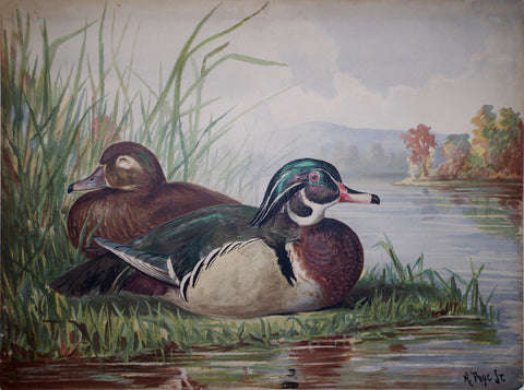 Alexander Pope, Jr. (1849-1924), Two Ducks on Land Plate 12