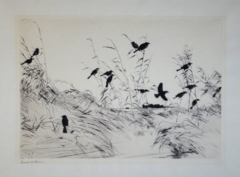 Frank Benson (1862-1951), Untitled (Several Birds)