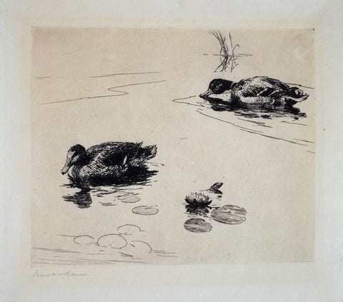 Frank Benson (1862-1951), Untitled (Two Ducks)