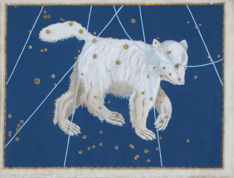 Johann Bayer (1572-1625), Ursa Major