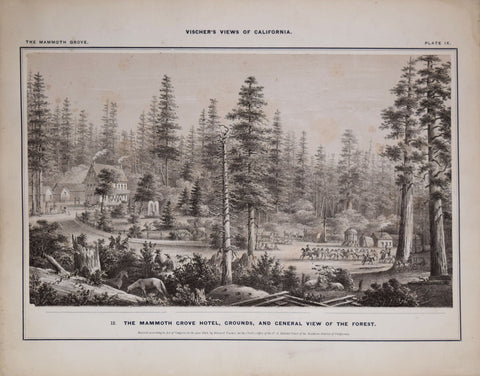 Edward Vischer (1809-1878), The Mammoth Grove Hotel, Grounds and General View of the Forest