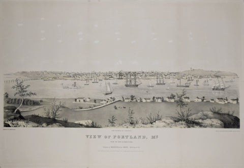 Edwin Whitefield (1816-1892), View of Portland, ME., from Cape Elizabeth side