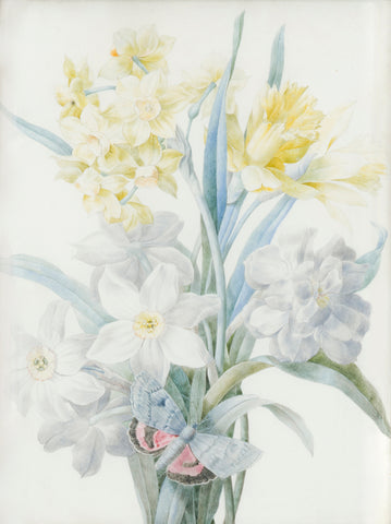 Zélie-Julie d'Leindre (French, 1795-1858), Narcissus and Daffodil with Butterfly