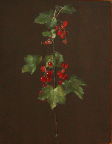 Barbara Regina Dietzsch (German, 1706-1783), Red Berries