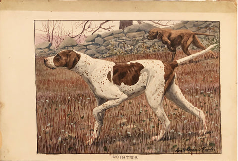 "LOUIS AGASSIZ FUERTES (AMERICAN, 1874-1927) ""The Pointer"""