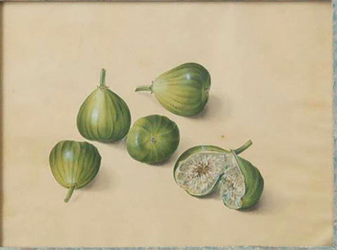 Attributed to Franz Xaver Gruber (Austrian, 1801-1862), Figs