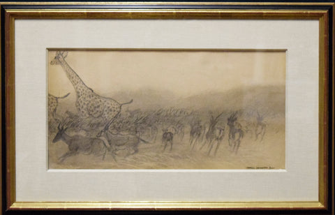 Charles Livingston Bull (American, 1874-1932), [Wildlife Sketch, Giraffe and Antelope]